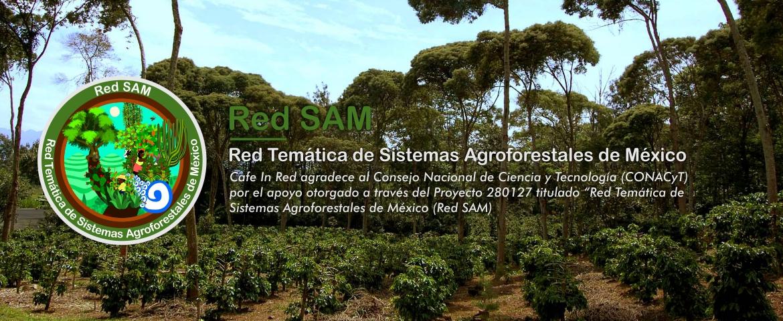 Red Temática de Sistemas Agroforestales de México (RedSAM)