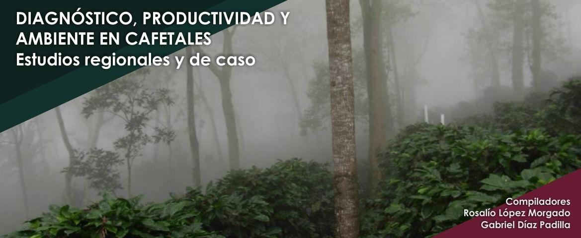 Diagnóstico, productividad y ambiente en cafetales: estudios regionales y de caso